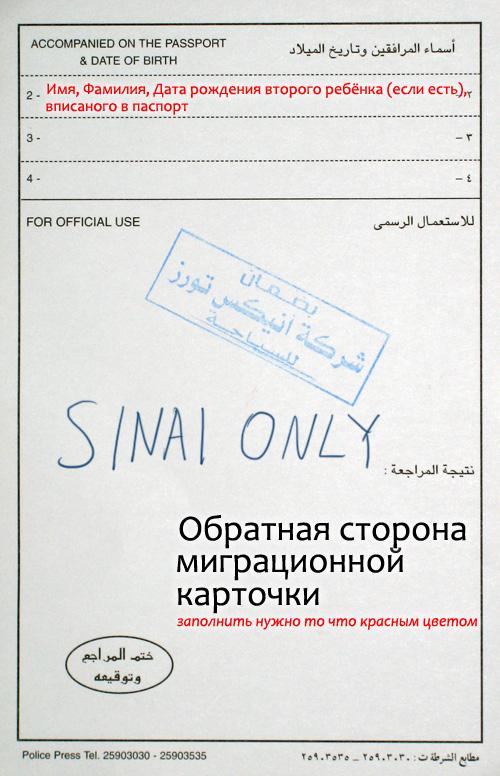 Где писать Sinai Only на обратной стороне миграционной карточки в Шарм Эль Шейхе