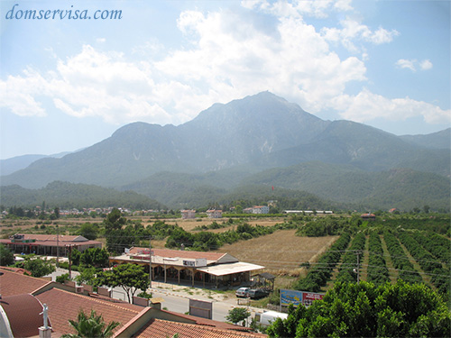 Вид из отеля на гору Тахталы, апельсиновую плантацию