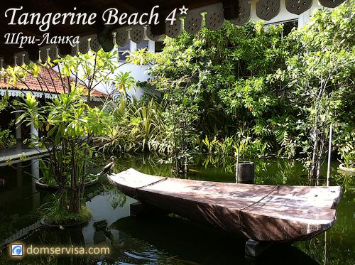 Отель Tangerine Beach 4* на Шри-Ланке