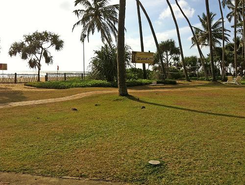 Территория и пляж отеля Tangerine Beach
