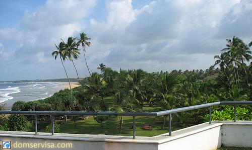 Вид с бассейна на третьем этаже на территорию отеля Vivanta By Taj