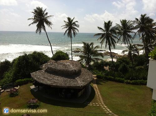Территория отеля Vivanta By Taj и вид на океан